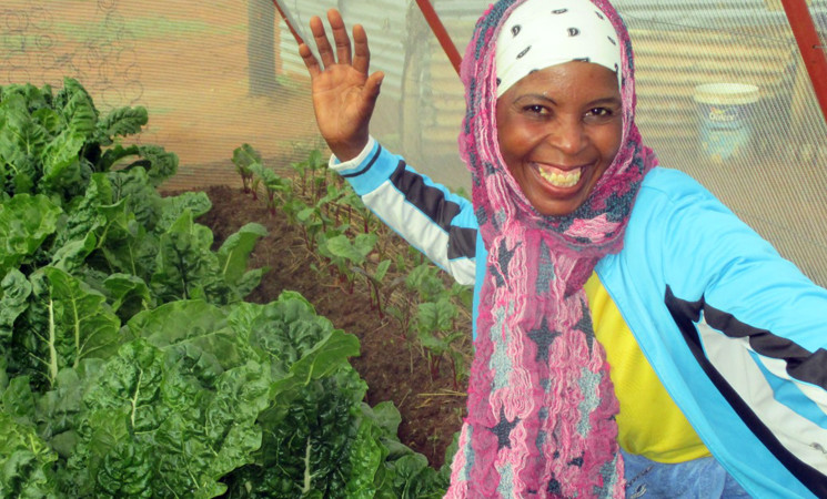 True facts from the food security project in Mangaung Townships